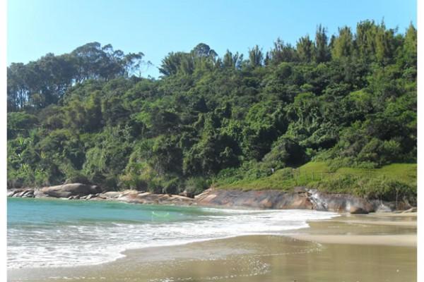 Praia da Pinheira4